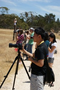 Photographers in a Line